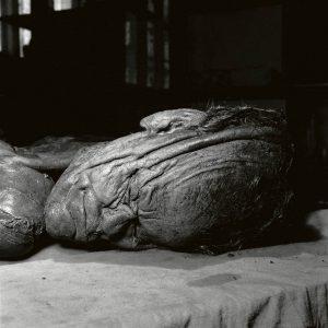 Grauballemandens hoved, som det så ud før konserveringen.