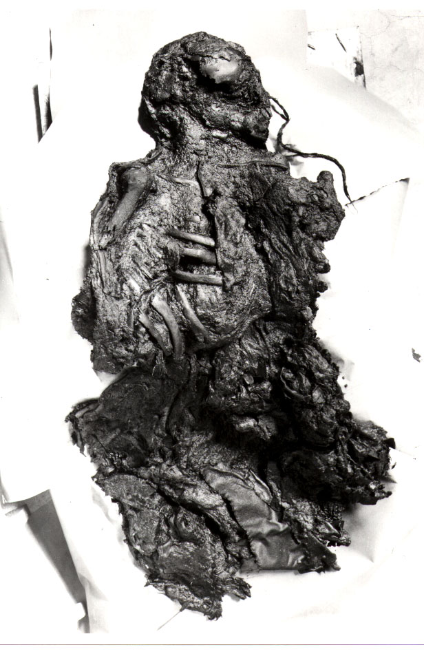 Forsiden af Ellingkvindens torso. Underdelen af kroppen blev ødelagt, da udgraveren troede at det var et dyr.